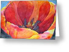 Tulip Splendor Greeting Card