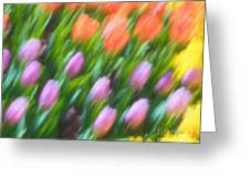 Tulip Swipe Greeting Card