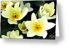 Tulip Town 16 Greeting Card