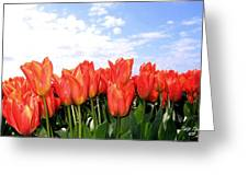Tulip Town 17 Greeting Card