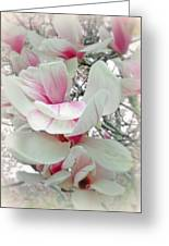 Tulip Tree Blossoms - Magnolia Liliiflora Greeting Card