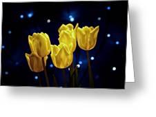 Tulip Twinkle Greeting Card