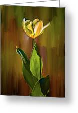 Tulip White Yellow Petals #h5 Greeting Card