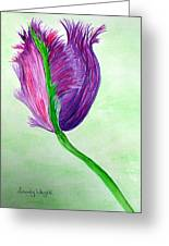 Tulip1 Greeting Card