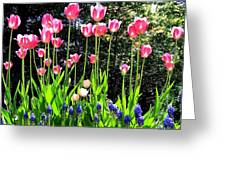 Tulipfest 10 Greeting Card