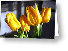 Tulipfest 2 Greeting Card
