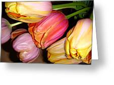 Tulips All Together Greeting Card