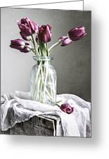 Tulips And Light Greeting Card