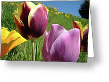 Tulips Artwork Tulip Flowers Spring Meadow Nature Art Prints Greeting Card