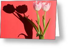 Tulips Casting Shadows Greeting Card