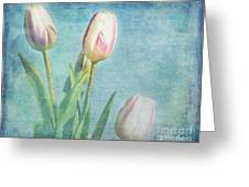 Tulips Day Greeting Card