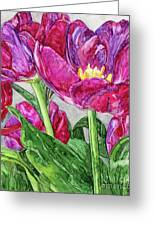 Tulips From A Friend Greeting Card