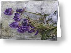 Tulips Frozen Greeting Card
