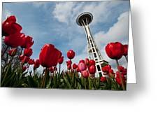 Tulips In Seattle H081 Greeting Card