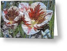 Tulips In Springtime Photomosaic Greeting Card