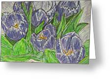 Tulips In The Spring Greeting Card