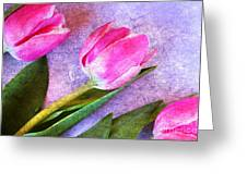 Tulips Meets Texture Greeting Card