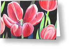 Tulips On Black Greeting Card