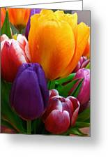Tulips Smiling Greeting Card