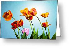 Tulips Greeting Card by Trevor Wintle