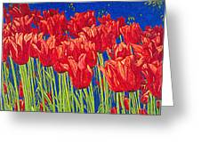 Tulips Tulip Flowers Fine Art Print Giclee High Quality Exceptional Color Garden Nature Botanical Greeting Card