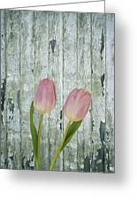 Tulips Two Greeting Card