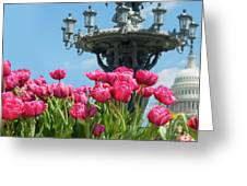 Tulips With Bartholdi Fountain Greeting Card