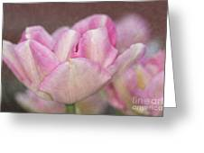 Tulips With Texture Greeting Card