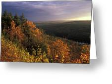 Tully River Valley Autumn Greeting Card