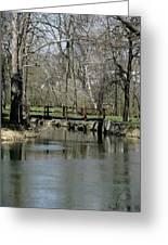 Tulpehocken Creek Greeting Card
