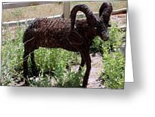 Tumble Weed Sheep Reno Nevada Greeting Card