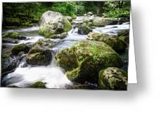 Tumbling Creek Greeting Card