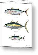 Tuna Fishes Greeting Card
