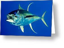 Tuna Magic Greeting Card