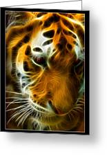 Turbulent Tiger Greeting Card