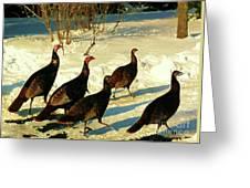 Turkey Call Greeting Card