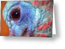Turkey Head Shot Greeting Card