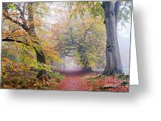 Turning Of The Trees Greeting Card