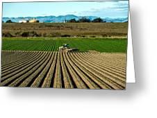 Turning The Soil Greeting Card