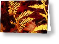 Turning To Autumn Greeting Card