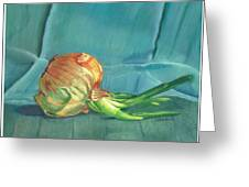 Turquoise Onion Greeting Card