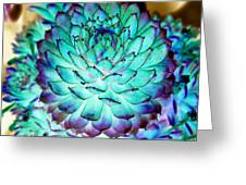 Turquoise Succulent 2 Greeting Card