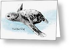 Turtle Dreamin  Greeting Card