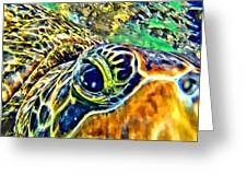 Turtle Eye Greeting Card