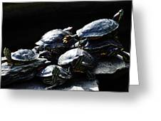 Turtle Family Greeting Card