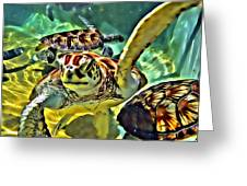 Turtle Swim Greeting Card