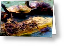 Turtles On A Log Greeting Card