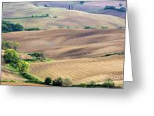 Tuscan Landscape With Plowed Fields Greeting Card