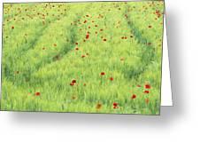Tuscan Monet Greeting Card