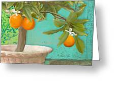 Tuscan Orange Topiary - Damask Pattern 3 Greeting Card